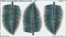 Pre Painted Photo Etched Howea Belmoreana Palm Leaves