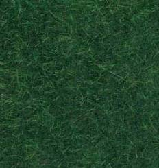 Dark Green Wild Grass