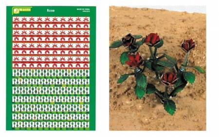Multi-Scale Rose Plants (Colored Paper)