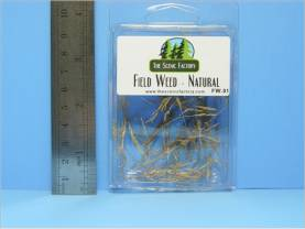 Field Weed - Natural