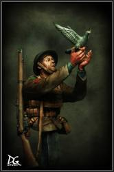 Great War Series: War Pigeon, British Army,  Duke of Wellington Regiment