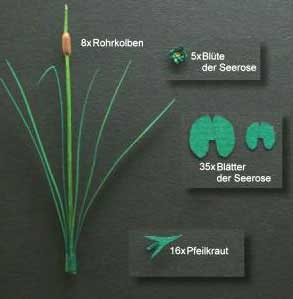 Bulrush, Arrowhead and Water Lily- Green Line Paper Plant