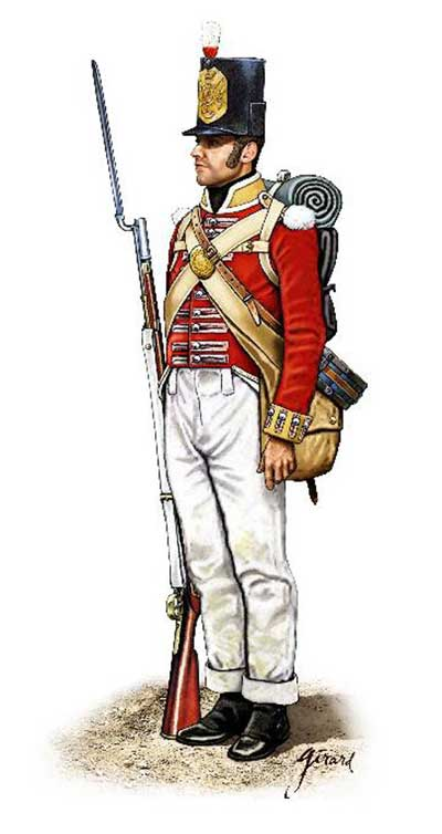 Napoleonic Peninsular War British Infantry