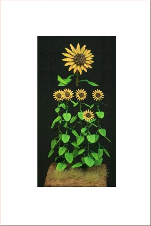 Sunflowers- Green Line Paper Plant