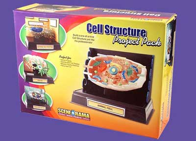 Scene-A-Rama - Project Pack - Cell Structure