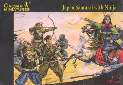 Japanese Samurai with Ninja