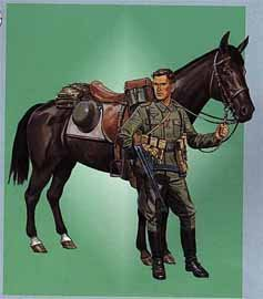German Wehrmacht Cavalry Soldier with Horse