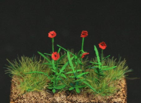 Poppies- Green Line Paper Plant