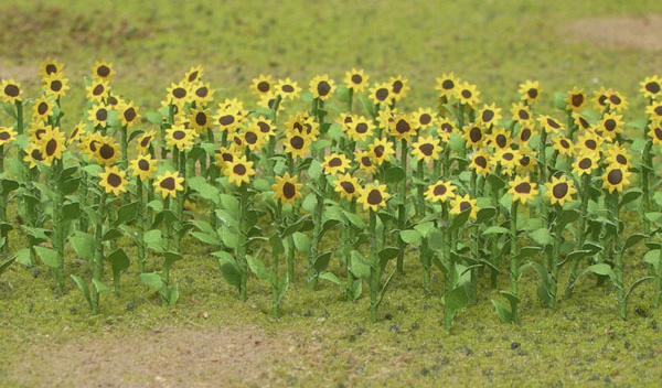 Sunflowers - Large (16 per pgk)