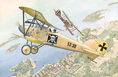 Albatros D III Oeffag s53 German BiPlane Fighter
