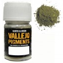 Pigments- Faded Olive Green - 30ml Bottle